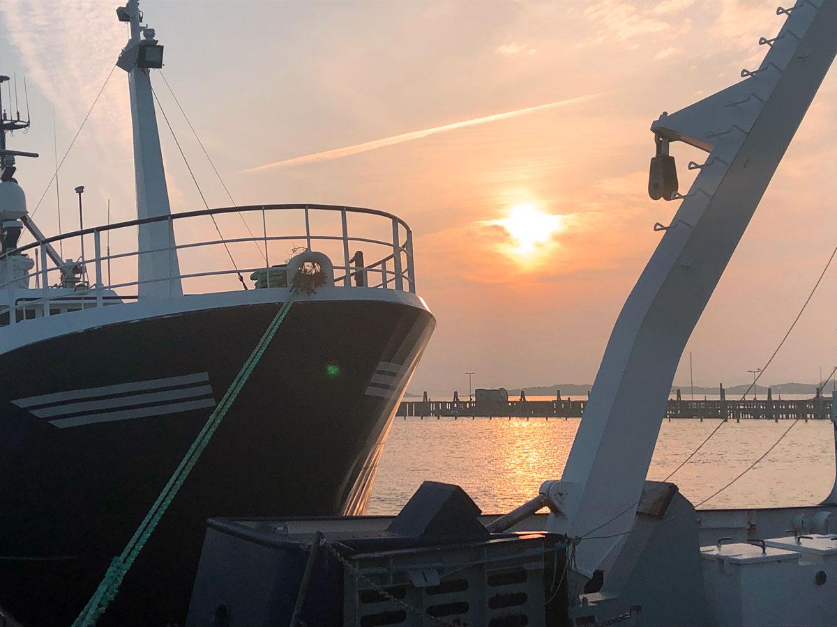 Fiskebäck seafood boat sunset